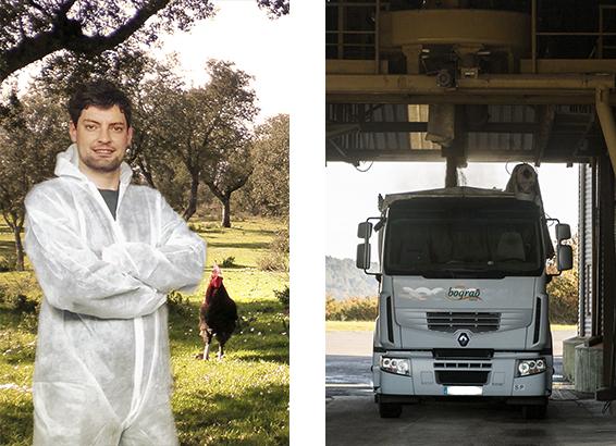 Piensos Bograo - Formulacion Personalizada alimentacion animal