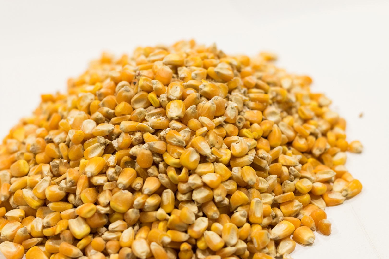 Piensos Bograo - Materias Primas Maiz